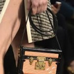 Petite Malle Bag | Louis Vuitton Fall/Winter 2014